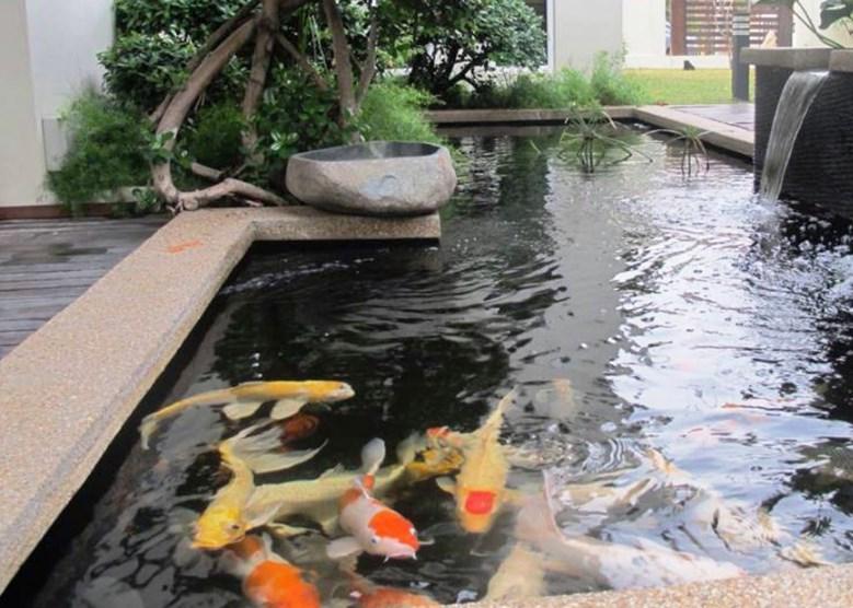 Taman dan Kolam Minimalis