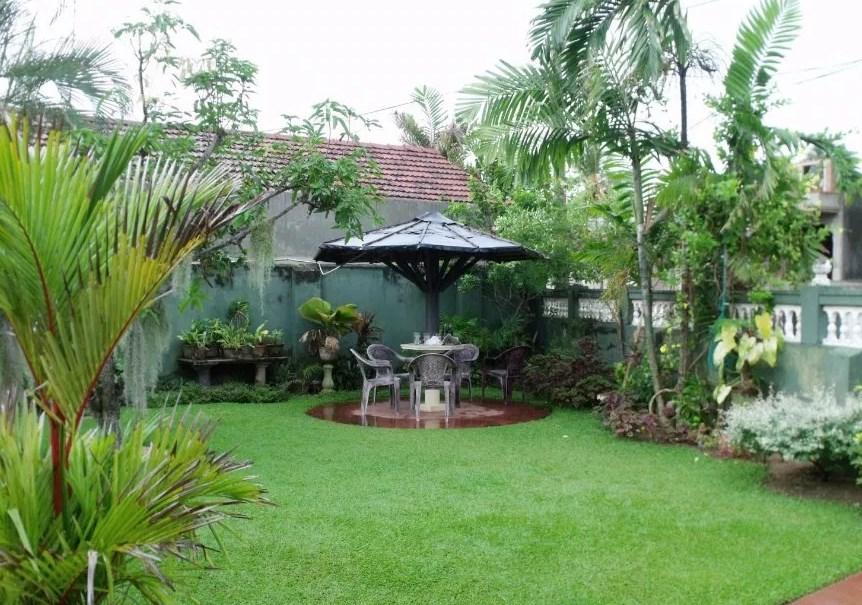 Tips Desain Taman Minimalis Depan Dan Belakang Rumah Dyah Ayu