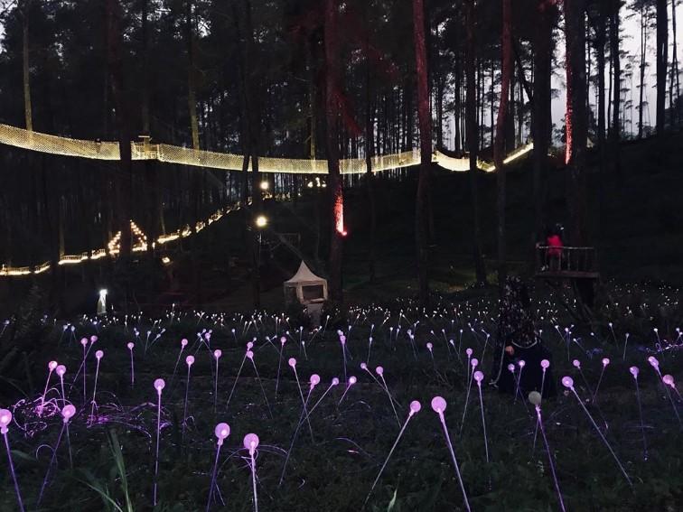 Orchid Forest, Tempat Wisata Alam Di Lembang Terbaik