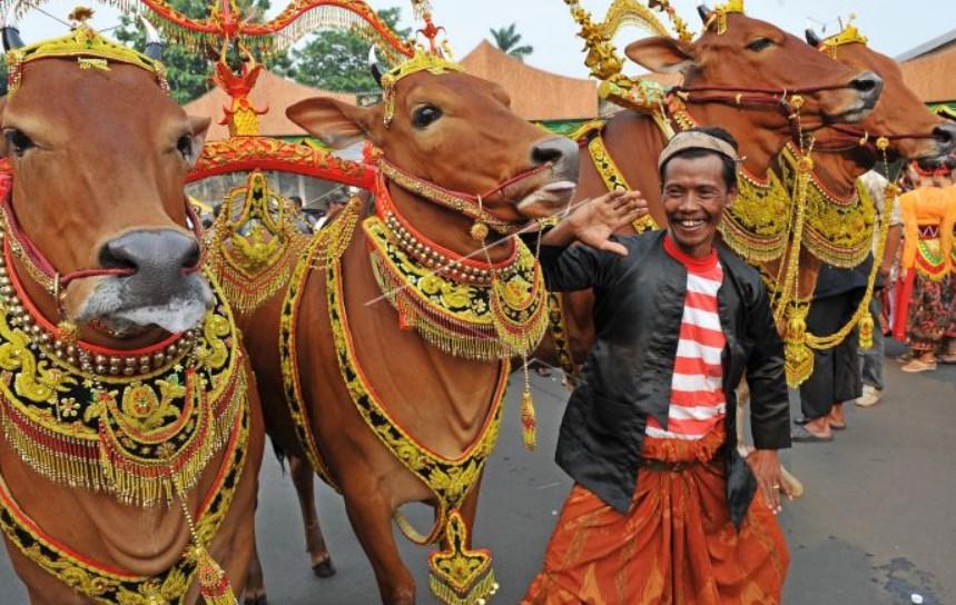 Kemeriahan Pesta Rakyat di Sumenep yang Penuh Warna