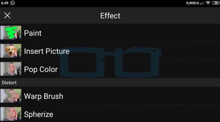 Fitur Effect PicSay Pro Apk